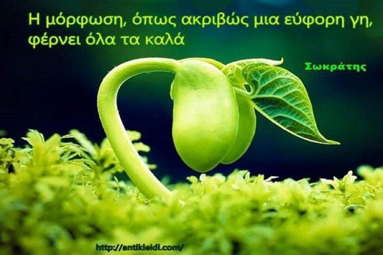 Φυτεύοντας τον σπόρο της γνώσης