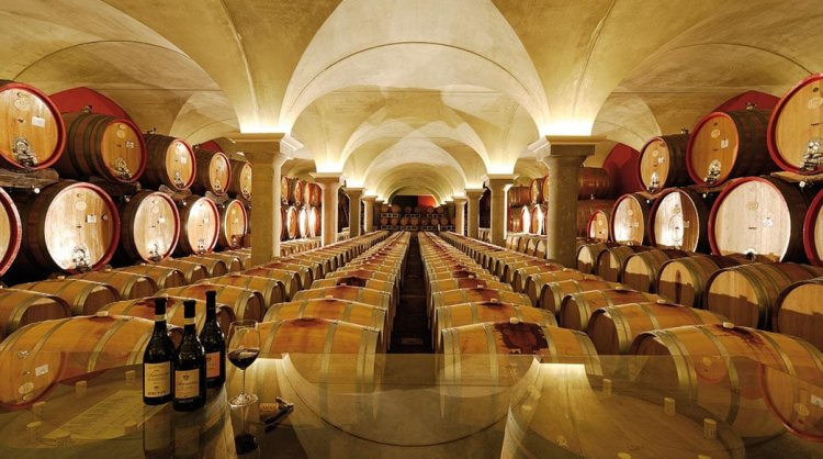 Wineries open to visitors on Sunday for European Day of Wine Tourism