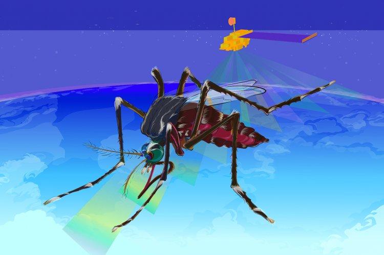 Οδηγίες στους ΟΤΑ για τα Προγράμματα Κουνουπιών 2020, από τον Εθνικό Οργανισμό Δημόσιας Υγείας [Έγγραφα]