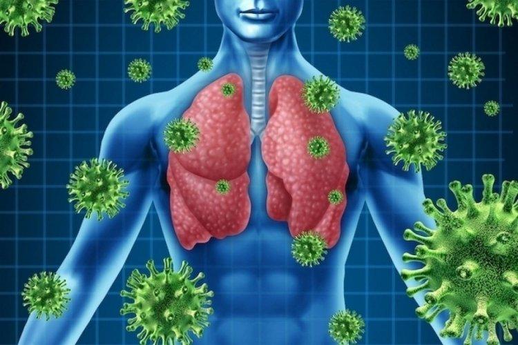 Coronavirus Disease: 42 κρούσματα στο Νότιο Αιγαίο - 1.022 κρούσματα σε Αττική, 302 σε Θεσσαλονίκη - Η κατανομή