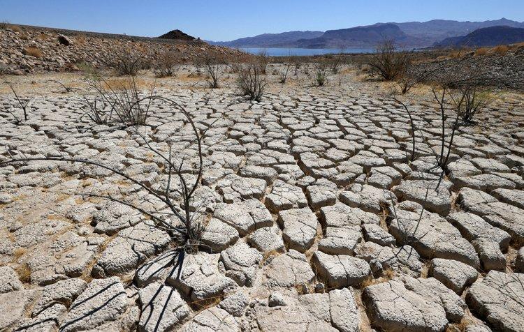 U.N.- 'the next pandemic': Ο ΟΗΕ προειδοποιεί ότι η ξηρασία μπορεί να είναι «η επόμενη πανδημία»