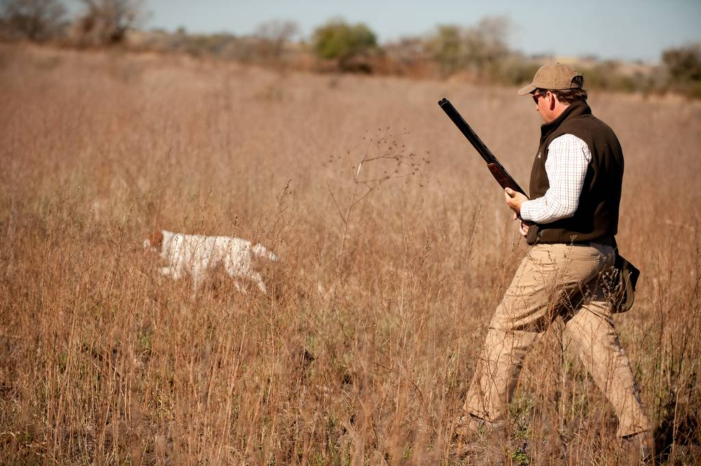 , Πότε αρχίζει και πόσο θα διαρκέσει η κυνηγετική περίοδος – Ποιές αλλαγές φέρνει η νέα Απόφαση